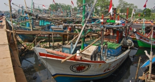 Fishing boats at Muara Angke port, from file. (Image: Wie146.)
