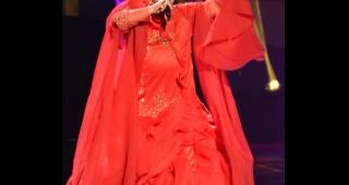 Redžepova at the 2013 Eurovision Song Contest. (Image: Albin Olsson.)